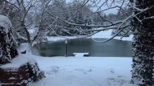 outside pond2