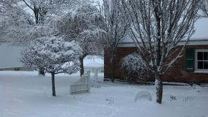 outside smokehouse and trees