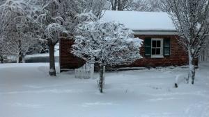 outside smokehouse and trees2